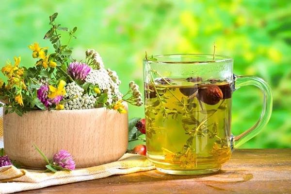 Лечение псориаза травами