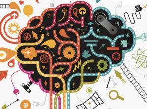 Из чего состоит интеллект людей: структура и компоненты