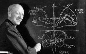 Основные теории исследователей
