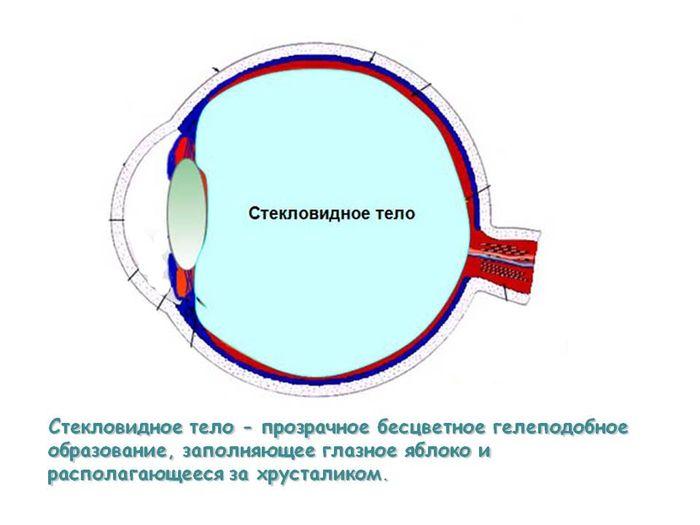 Что такое стекловидная субстанция глаза?