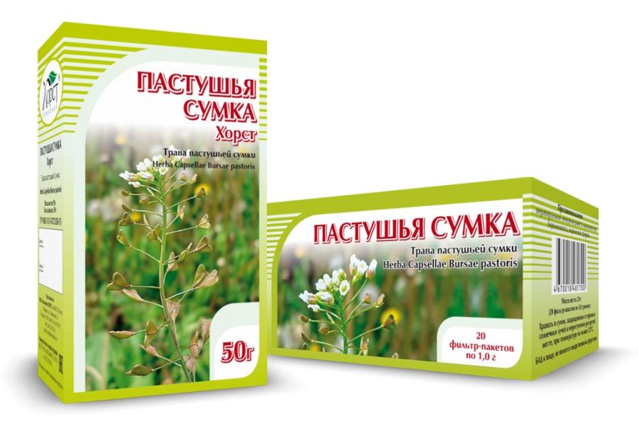 Пастушья сумка - полезные свойства, противопоказания и другие особенности растения