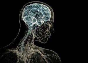 Причины развития сенильной деменции у пожилых